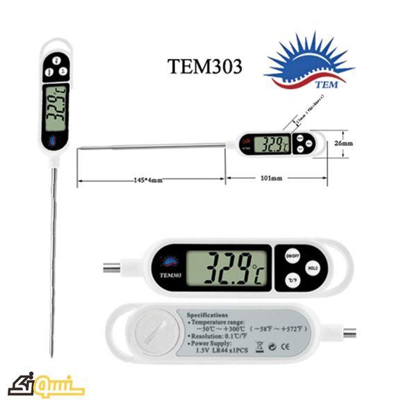 TEM303